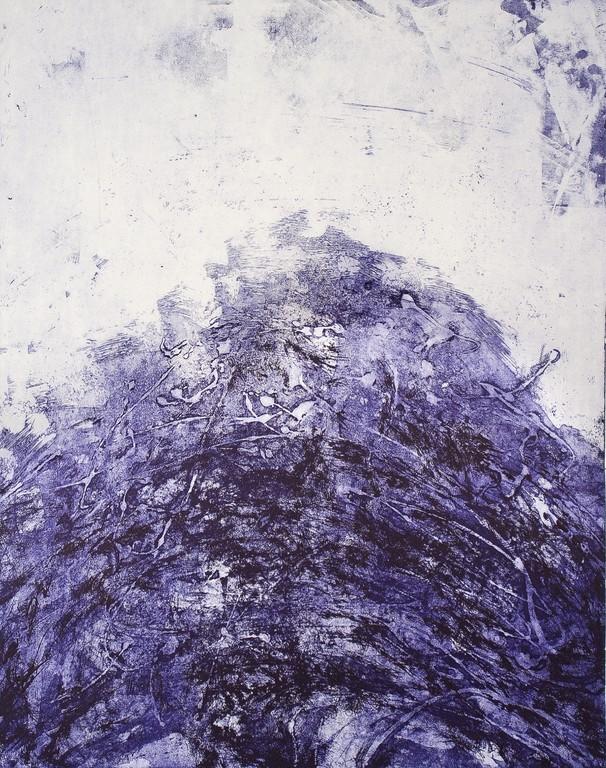 Serie Monton - 2. tecniche miste dell'incisione stampa in bicromia dettaglio